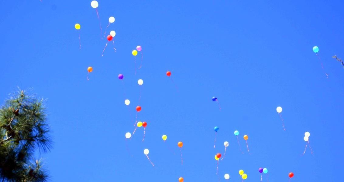 """Muğla Engelliler Derneğince düzenlenen """"Hayatlarımıza renkli bir dokunuş katmak için duvarımızı ve gökyüzünü birlikte boyayalım"""" etkinliği kapsamında engelliler ve vatandaşlar, renkli balonları gökyüzüne saldı. Muğla Engelliler Derneğinde bir araya gelen engelliler ve aileleri, otizm konusunda farklı bir etkinliğe imza attı. Engelliler ve aileleri, ellerindeki onlarca renkli balonu gökyüzüne bıraktı. ( Durmuş Genç - Anadolu Ajansı )"""