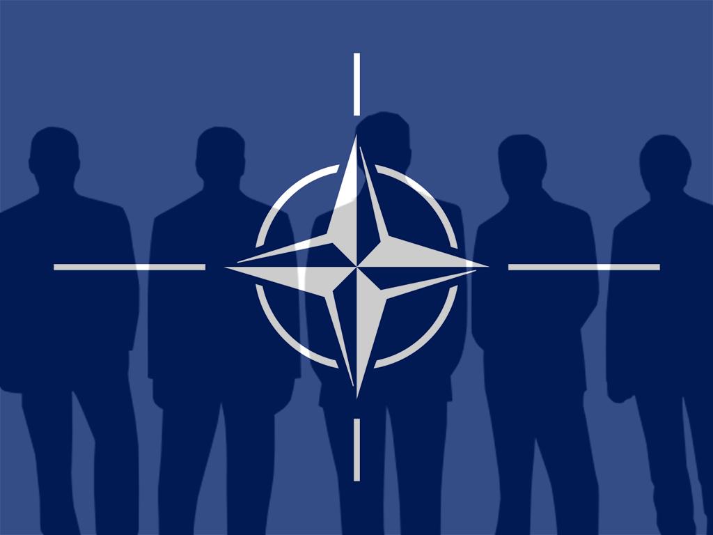 NATO Müttefikleri
