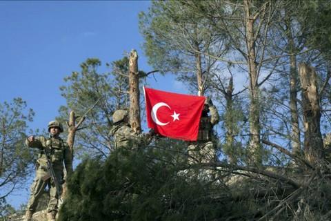 Zeyin Dalı Harekatı - Burseya Dağı Afrin