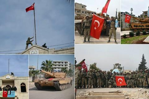 Zeytin Dalı Harekatı, Afrin