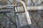 Avusturya'da 7 cami için kapatma kararı verildi