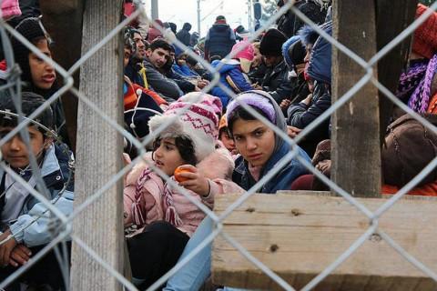Suriyeli Göçmenler