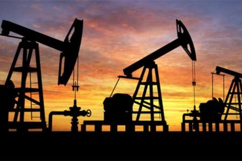 أسعار البترول