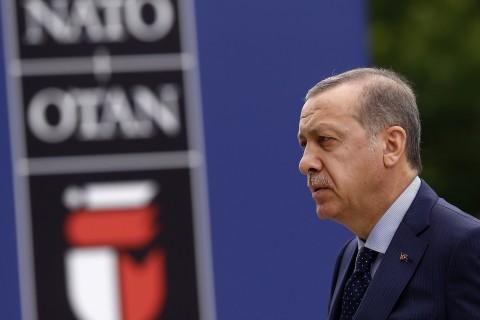 تركيا وحلف الناتو