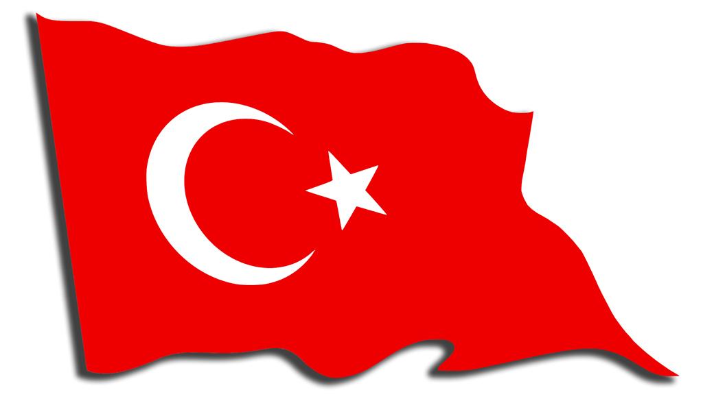 ما طبيعة الإصلاحات القادمة إلى تركيا؟