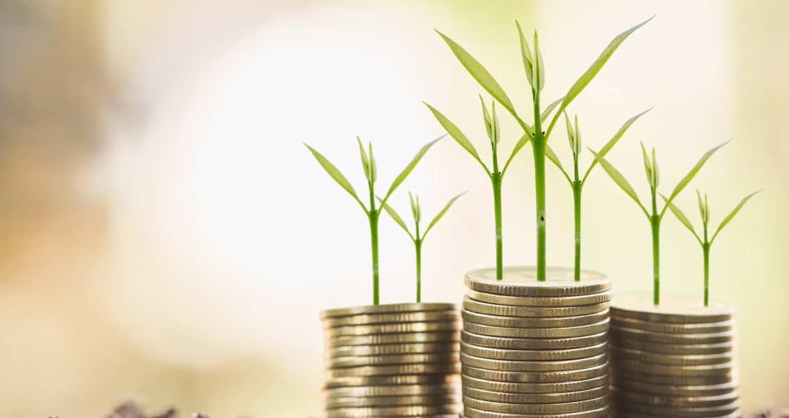Türkiye'de İslami Finansın Dönüşümünün Ekonomi Politiği