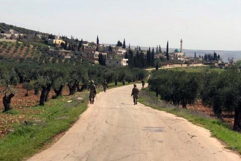 Zeytin Dalı Harekatı - Afrin