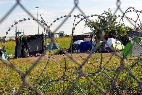 Macaristan sınırında mülteci çadırları