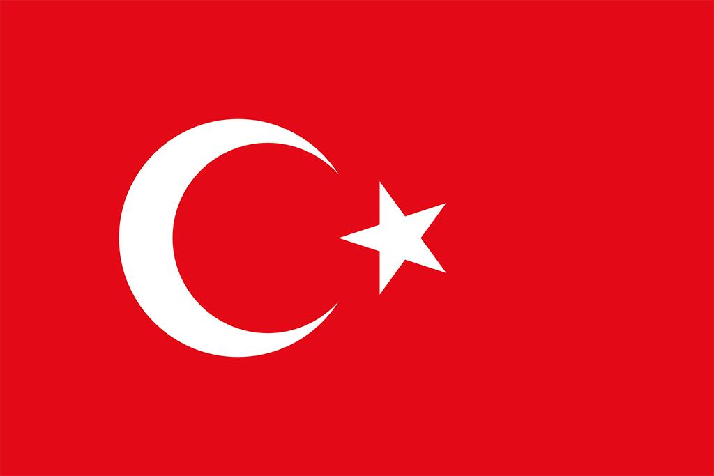 'Türkiye İttifakı' ile Ne Kastedilmiş?