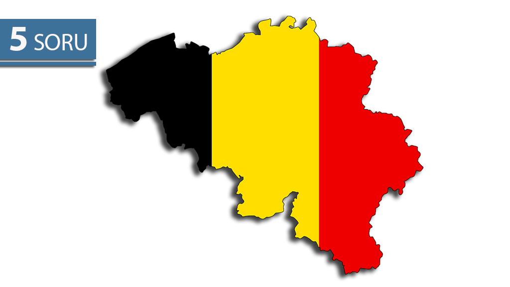 5 Soru: Belçika Genel Seçim Sonuçları
