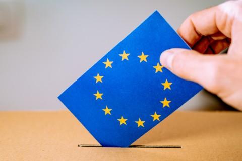 Analiz: Aşırı Sağ Ve Brexit'in Gölgesinde 2019 Avrupa Parlamentosu Seçimleri