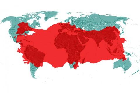 Türkiye-Dünya Haritası