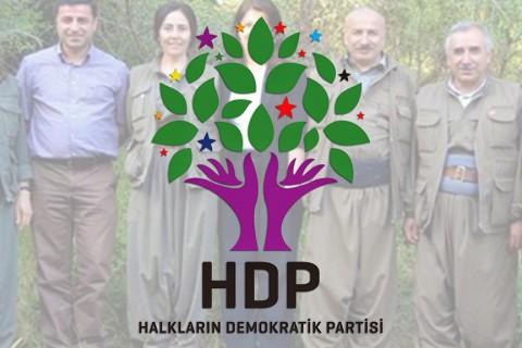 HDP-PKK İlişkisi