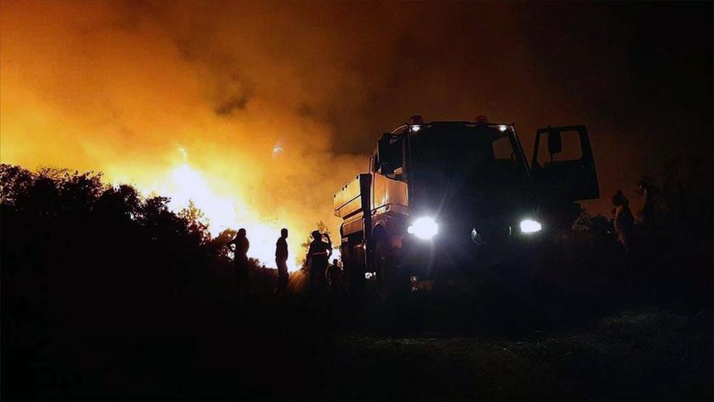 Orman yangınına müdahale