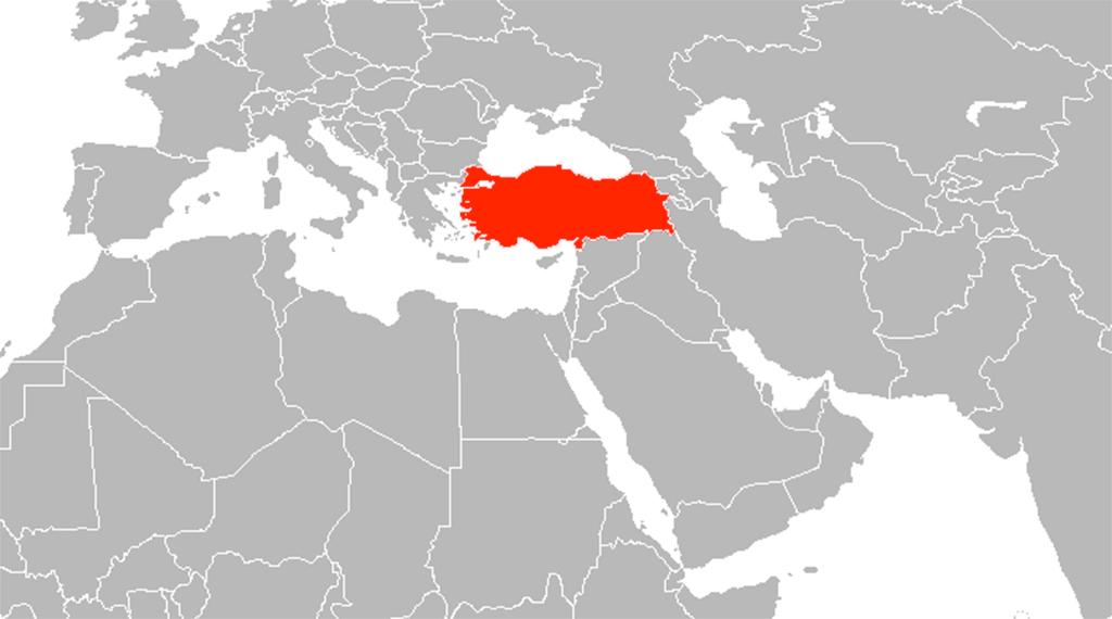 Türkiye-Körfez Ülkeleri: Yakınlaşma Dinamikleri
