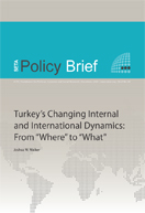 "Changing Internal and International Dynamics: From ""Where"" to ""What"""
