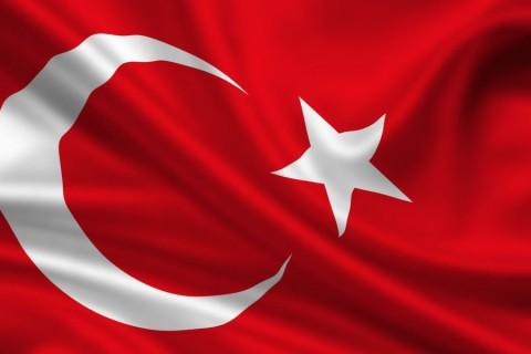 Turkey: No Presidentialism Without Federalism?
