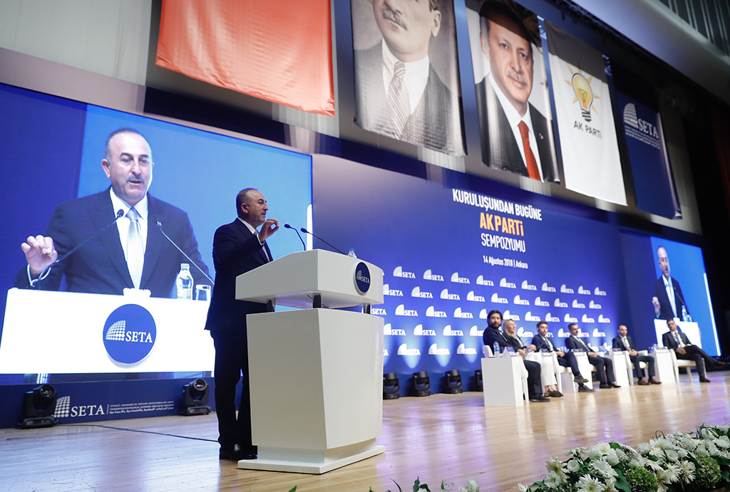 Turkish foreign policy 'domestic as well as global'