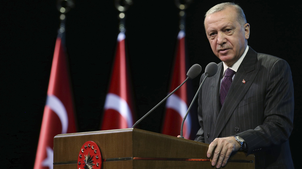 Who opposes Erdoğan's reforms? A weird case in Turkish politics